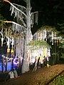 Positivus 15' Avatartree - panoramio.jpg