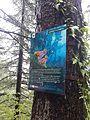 Post inside Ayubia national park.jpg