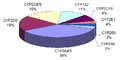 Proportion of drugs metabolized by different CYPs.png