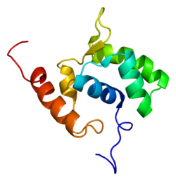 Protein ELL PDB 2doa.png