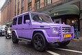 Purple monster (7565009486).jpg