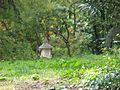 QTA- El jarrón decorativo es visible desde lejos (23482390589) (2).jpg