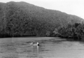 Queensland State Archives 1279 Russell River and Graham Range NQ c 1935.png