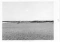 Queensland State Archives 4682 Nerang River Southport June 1952.png
