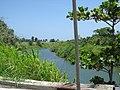 Río Grande de Manatí from PR-684 in Barceloneta, Puerto Rico 02.jpg