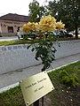 Rózsatő és névtábla a pilisszentiváni német nemzetiségi tanösvény rózsaesküvős állomásán.jpg