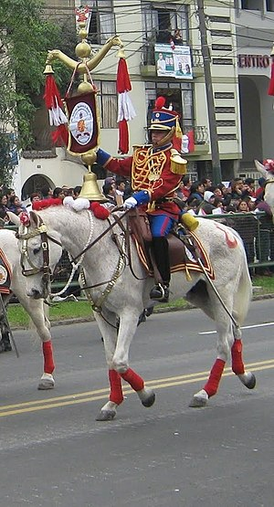 """Battle of Tarqui - 1st """"Hussars of Junin"""" Regiment of Cavalry. This peruvian corps was distinguished in the battle of Portete de Tarqui in defeating the Colombian Squadron of Cavalry Cedeño."""