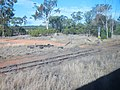 Rail Siding near Charleville - panoramio.jpg