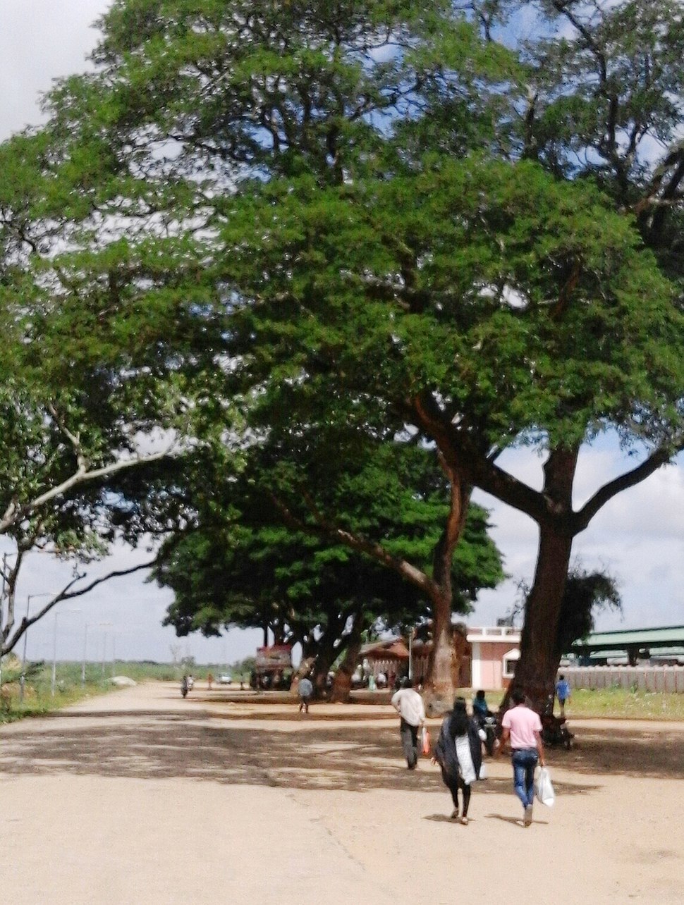 Railway Station at Chamarajanagara