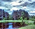 Ramensky District, Moscow Oblast, Russia - panoramio - Andris Malygin (11).jpg