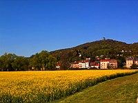 Rapsfeld und Mont St-Quentin.jpg