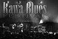 Rawa Blues Festival Storm Warning 010.jpg