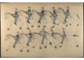 Red Horse pictographic account of the Battle of the Little Bighorn, 1881. 8100.png