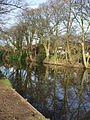 Reflection of trees along Lancaster canal - geograph.org.uk - 741519.jpg