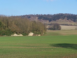 Boxley Abbey - Remains of Boxley Abbey and North Downs