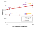 Resolt&Method P Fig1(b).png