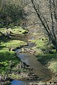 Ribeira de Odivelas - Portugal (16390842670).jpg