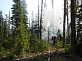 Ridge Fire Boise National Forest 2.jpg