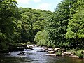 River Dart - geograph.org.uk - 843439.jpg