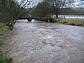 River Irwell At Strongstry - geograph.org.uk - 314938.jpg