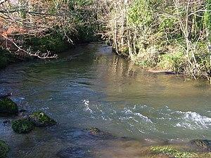 River Yealm - River Yealm near Yealmpton.