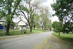 Road in Borovnice, Benešov District.jpg