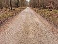 Rodenbacher Weg.jpg