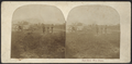 Roes Hotel, West Point, from Robert N. Dennis collection of stereoscopic views.png