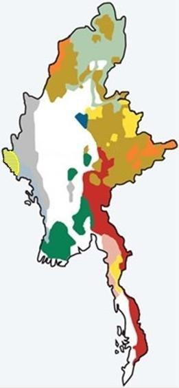 Rohingya in Myanmar Map