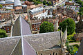 Roof of Worcester cathedral - geograph.org.uk - 1611514.jpg