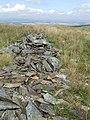 Ruined Drystane-Dyke - geograph.org.uk - 521302.jpg