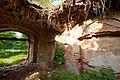 Ruiny pałacu w Kamionnej 03.jpg