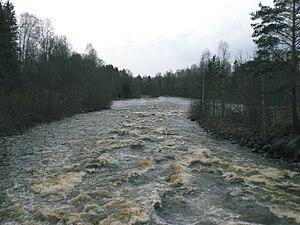 Sävar River - Image: Sävarån vårflod 2008 05 02