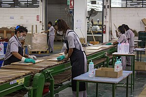 Women wearing gloves and masks on an assembly line