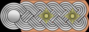 Standartenführer - Image: SS Standartenführer (Oberführer)