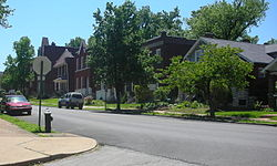Homes across from Gravois Park in the neighborhood of the same name.