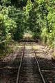 SabahStateRailways RailwayOperationInPadasRiverValley-10.jpg
