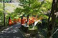 Saimyoji Kyoto Kyoto01n4592.jpg