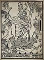 Saint Christopher. Woodcut. Wellcome V0031876.jpg