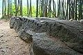Sakafuneishi,酒船石 - panoramio - z tanuki (1).jpg