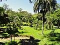 San Juan Botanical Garden - DSC07037.JPG