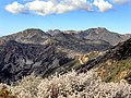 Santa Monica Mountains National Recreation Area (b71d1561-df6c-4345-8dd2-169caec05487).jpg