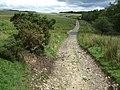 Sarn Helen Roman Road, Coed y Rhaiadr - geograph.org.uk - 917463.jpg