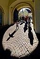 Schattenspiele im Schloss Bad Mergentheim.jpg