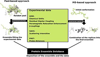 Protein structure - Image: Schematic view of the two main ensemble modeling approaches