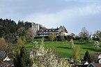 Schloss_Wolfurt_3.JPG