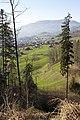 Schwyz - panoramio (54).jpg