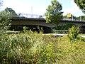 Seebach, Mündung, Feuchtgebiet, Steg.jpg
