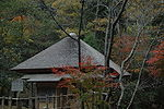 Small hut with thatched pyramid shaped roof amongst trees.