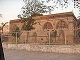 Sidi-Saiyyed-Jaali-Ahmedabad.jpg